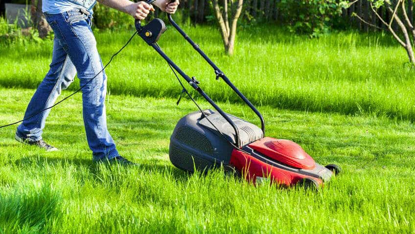 Best Cheap Lawn Mowers In 2020 – Reviews