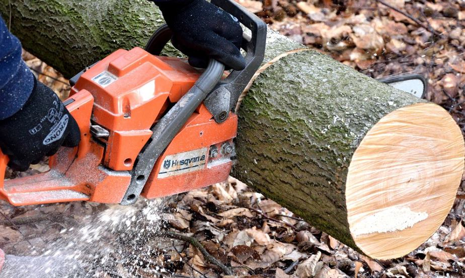 Echo cs-490 vs. Husqvarna 445: Which Chainsaw Is The Superior?