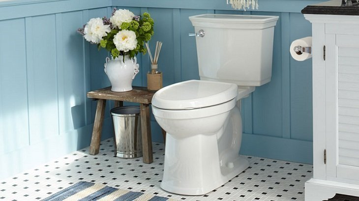 Best American Standard Toilet Reviews